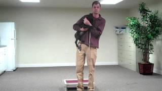 Training With 10 Week Old Lab Puppy - Dog Trainer