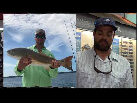 Topsail Fishing Report 6 8 2018