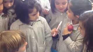 DFC España Los juguetes de la alegría  FET María Inmaculada  Mora de Toledo