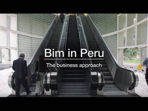 Bim in Peru: Building the Eco-system for Mobile Financial Services
