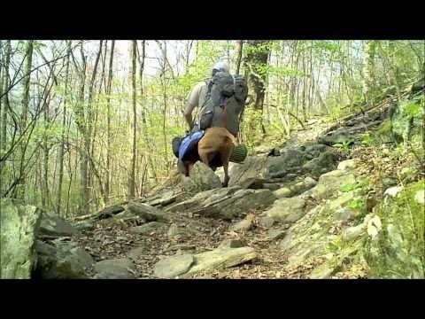 On a Thru-Hike with a dog - Appalachian Trail 2010