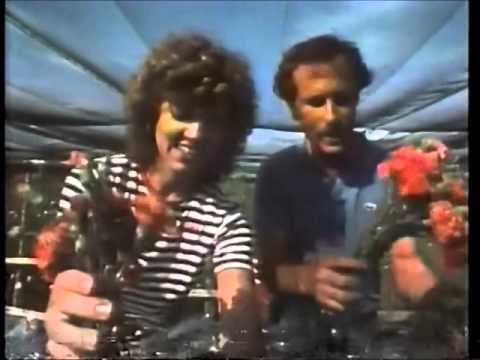 WFLA Spirit of Tampa Bay Promo Campaign (1982)