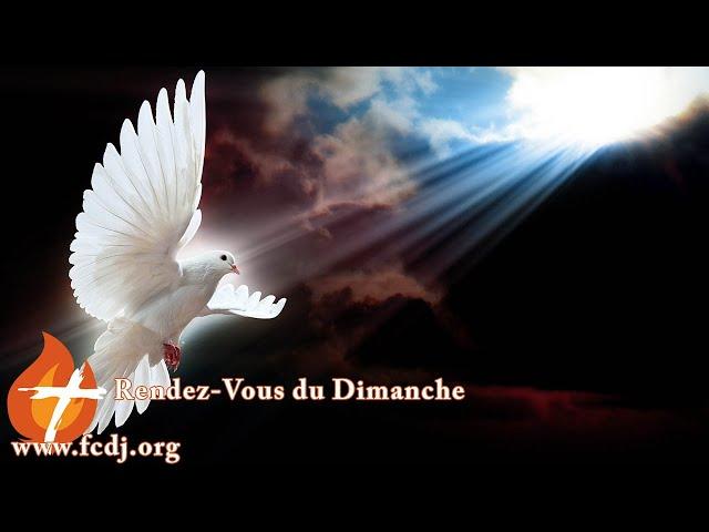 Demeure en paix (19 avril 2020)