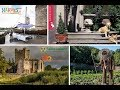 LIVE from Waterford, Ireland | Evine