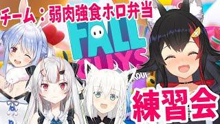 【チーム #弱肉強食ホロ弁当】いざ、練習会!!!【FallGuys】