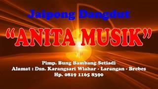 Kembang Tanjung ANITA MUSIK Live Karangsari 02 jULI 2019.mp3
