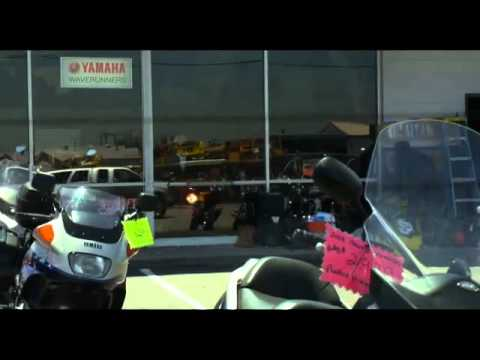 Jackass 3d online espanol latino completa