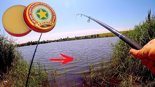 Рыбалка на ЗВЁЗДОЧКУ! Сегодня Карась, Окунь и Плотва клевали на УРА!!!