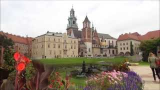 Vivaldi - Concerto for Mandolin and Orchestra in C RV 425