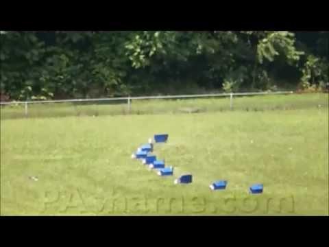 Persuasive Speech Video Clip