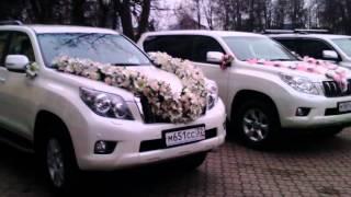 Свадебный кортеж в Брянске 8-960-559-82-83
