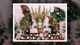 Video | Rồng phụng trái cây, rong phung trai cay, long phụng trái cây | Rong phung trai cay, rong phung trai cay, long phung trai cay