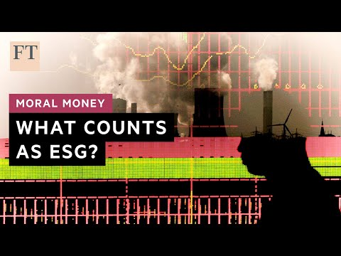 What does 'ESG friendly' really mean? I FT