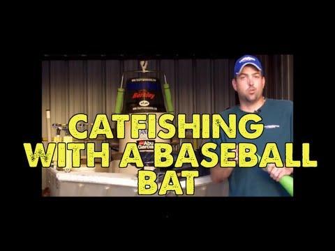 Video Statistics on catfishing