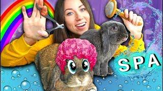 ПОСЛЕДНЕЕ ВИДЕО СПА Салон Для Кроликов - Кролик Лизун умер | Elli Di Pets
