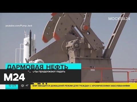 Цены на нефть продолжают снижаться - Москва 24