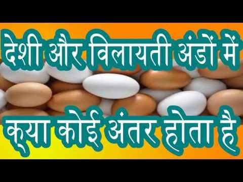 देशी और विलायती अंडों में क्या अंतर  होता है What is the difference between domestic and cherry eggs