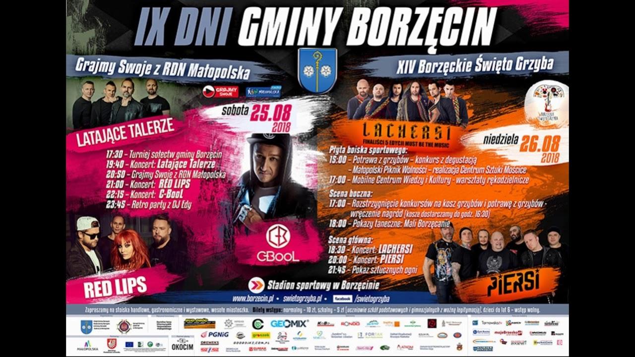 VIII Dni Gminy Borzcin (19-27 sierpnia - Koncertowy
