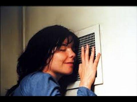 Dancer in the Dark 2000 with Catherine Deneuve, David Morse, Björk Movie