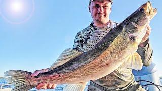 4 ПРИЧИНЫ из за которых ТЫ ВСЁ ЕЩЁ НЕ ЛОВИШЬ на поролон Ответы на самые острые вопросы рыбаков