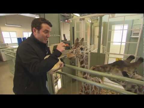 RMR: Rick at the Calgary Zoo