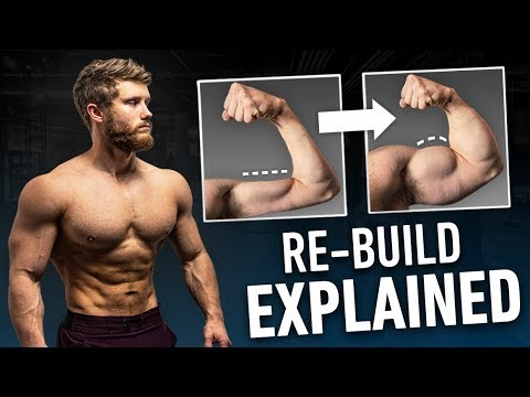How To Re-Build Muscle After A Training Break [+ Free Program]