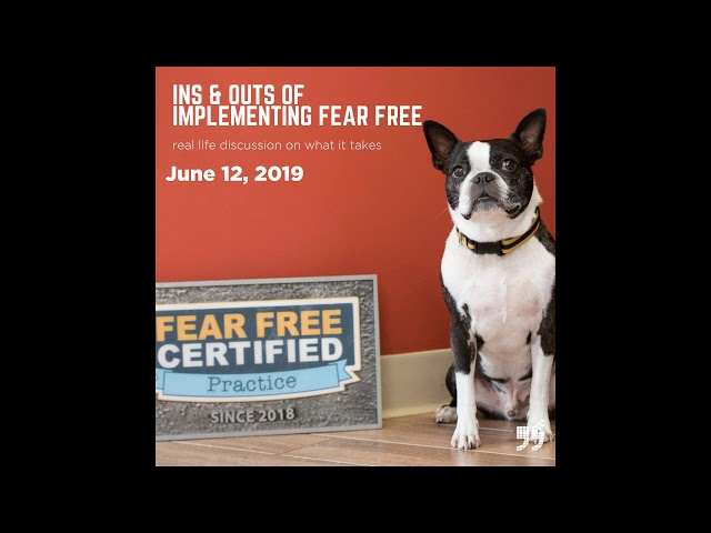 Implementing Fear Free