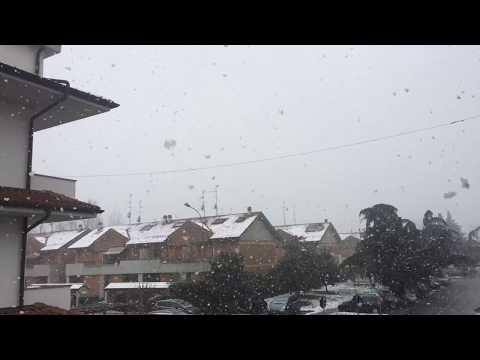 Neve in atto a Segrate (4 km da Milano) alle ore 10.30 di sabato 3 marzo. Fiocchi anche di 3 cm!