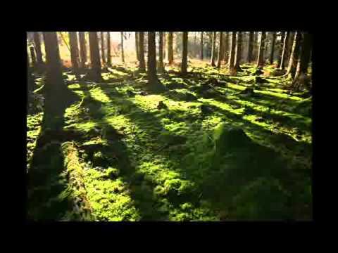 Depeche Mode   I Want It All (Alex Khashi Remix) mp3