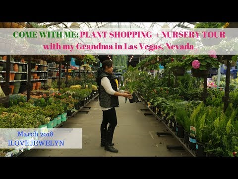 Come with me: Plant shopping + nursery tour with my grandma in Las Vegas | March 2018 | ILOVEJEWELYN