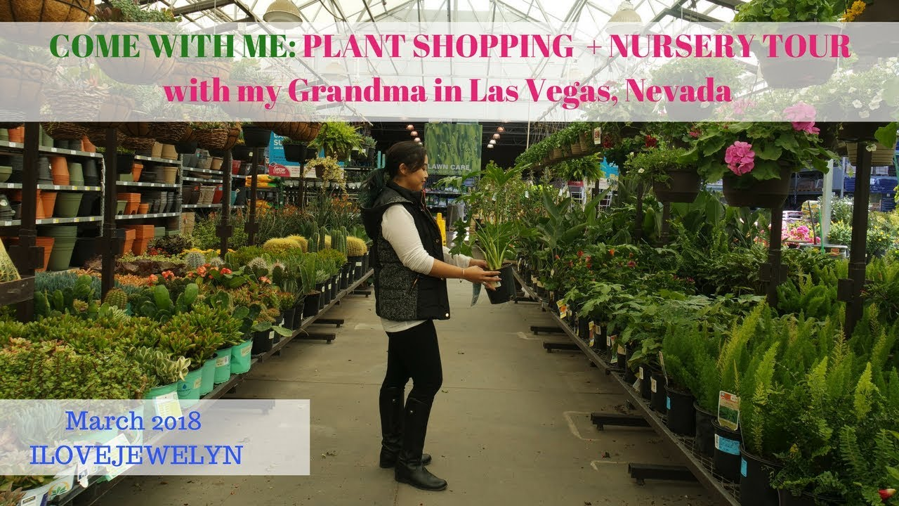 Come With Me Plant Ping Nursery Tour My Grandma In Las Vegas March 2018 Ilovejewelyn