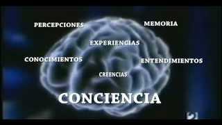 EL DIAGNOSTICO DE IFA #1