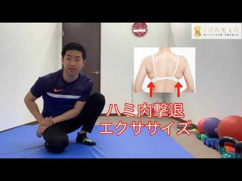 【ハミ肉撃退】背中痩せエクササイズ
