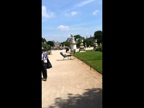 Tuileries Garden, Paris 2014