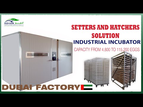 Industrial Incubator Setter And Hatcher | Capacity From 4,800 To 115,200 Eggs