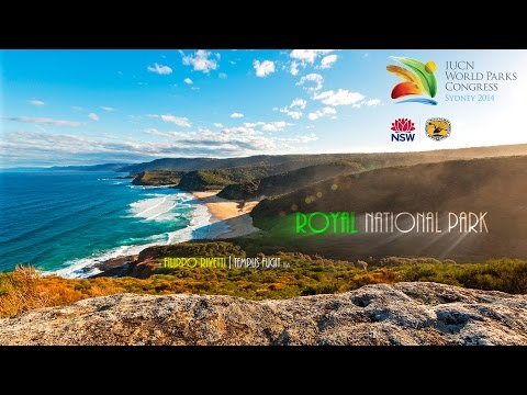 Royal National Park: The First Park in 4K