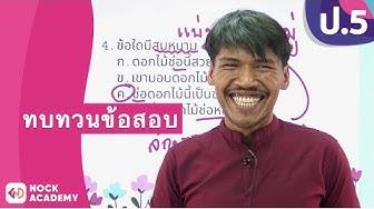 วิชาภาษาไทย ชั้น ป.5 เรื่อง ทบทวนข้อสอบ