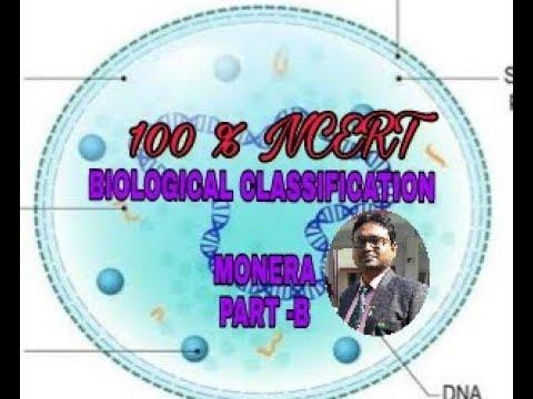 Biological classification MONERA Part-B Cbse BiologyClass 11.Ncert