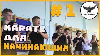 Карате для начинающих # 1. Первый проект о карате.