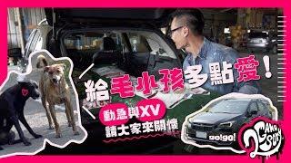 給毛小孩多點愛|台灣動物緊急救援小組 與 Subaru XV GT Edition  一起來關懷【CC字幕】