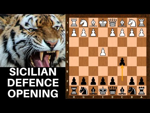 Chess Openings: Tutorial : Sicilian Defense for beginners guide - black opening