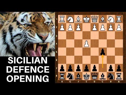 Sicilian Defence Chess Opening - Dragon Najdorf Scheveningen Paulsen Pelikan Sveshnikov  - part 1