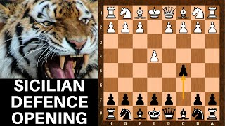 chess openings tutorial sicilian defense for beginners guide black opening