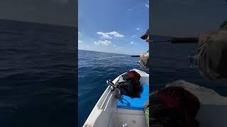 Рыбалка в турции алания
