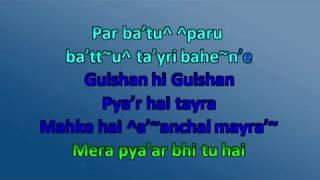 Mera Pyar Bhi Tu Hai Duet Karaoke with male voice