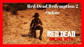 Red Dead Redemption 2: Online Gameplay Grinding & Missions Road To $20K Legitimate #5