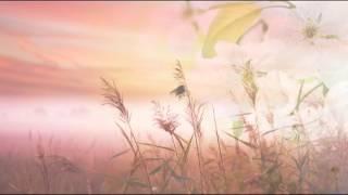 Musica Rilassante: Musica New Age per Rilassamento e Meditazione