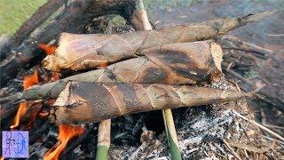 Sừng Tê Giác Nướng Sinh Tồn Trong Rừng .Măng Tre Nướng. Primitive Technology : Grilled Bamboo Shoot