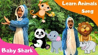 Baby Shark Learn Animals Song - Nursery Rhymes & Kids Songs