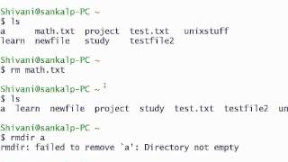 Unix Tutorial 2